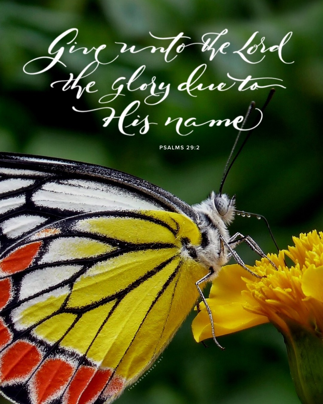 Give unto the lord the glory due His Name