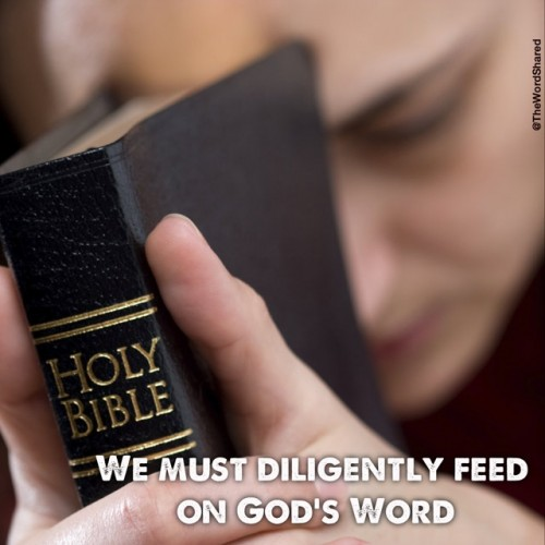 Feed on The Word of God