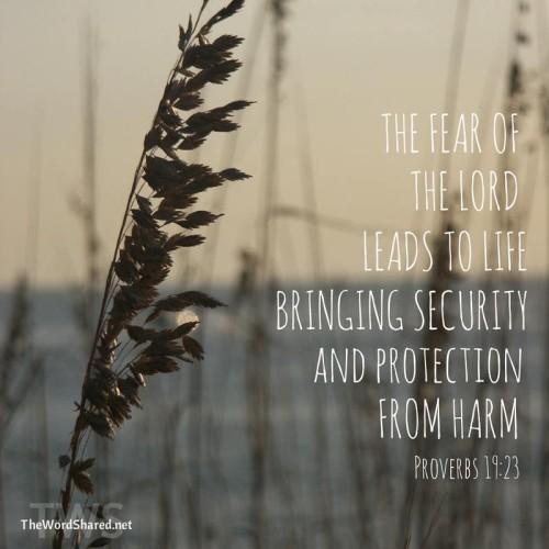Proverbs 19-23