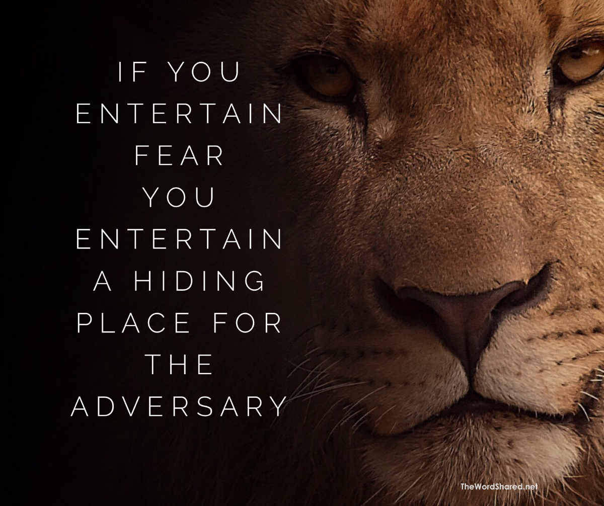 If You Entertain Fear