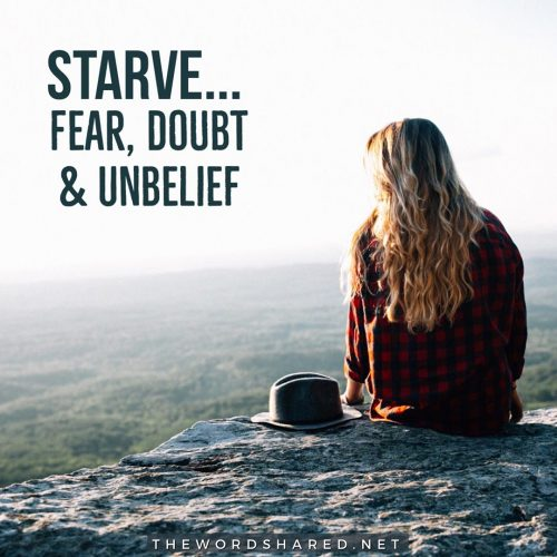 Starve Fear Doubt and unbelief