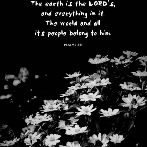 """The earth is the Lord's, and everything in it, the world, and all who live in it;"" ‭‭Psalm‬ ‭24:1‬ ‭NIV‬‬ https://www.bible.com/111/psa.24.1.niv"