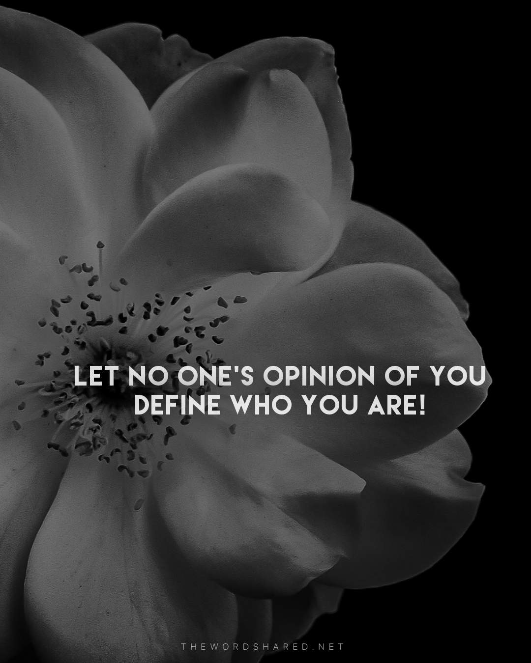 Let no ones opinion of you define who you are