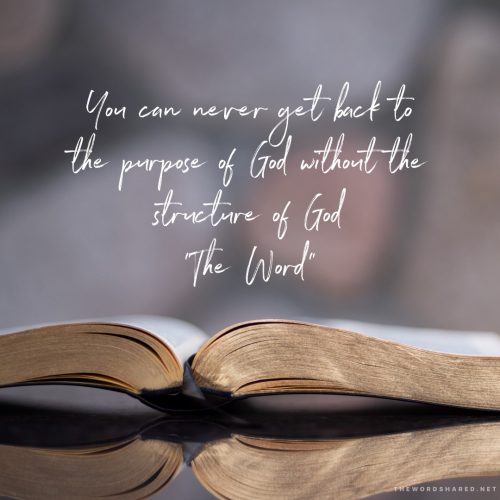 Get back to the purpose of God